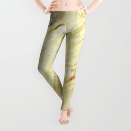 Old World Marble II - Faux Finishes - Marble Leggings