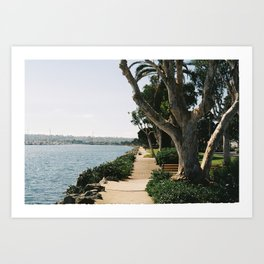 Trips to the Bay Art Print