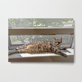 Window Seat Metal Print