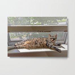 Window Seat Metal Print