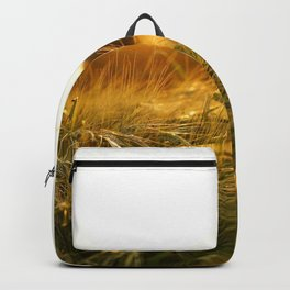 Barley Baby Backpack