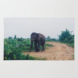 Elephant in Udawalawe National Park, Sri Lanka Rug
