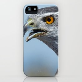 Northern Goshawk Screeching iPhone Case