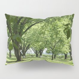 Peach and Pecan Orchard Pillow Sham