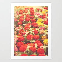 I'd like to lie in a bed of flowers Art Print