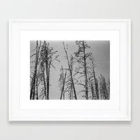 montana Framed Art Prints featuring Montana by Caitlin Elizabeth Brookins