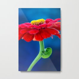 COLOR BLOCKING | RGB Metal Print