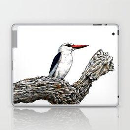 WOODLAND KINGFISHER Laptop & iPad Skin