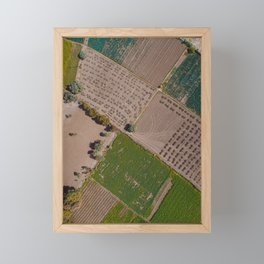Udaipur Fields 3 Framed Mini Art Print