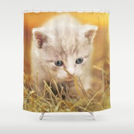Kitten | Chaton Shower Curtain