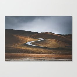 Swinging Road Canvas Print