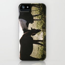 Misty horses iPhone Case