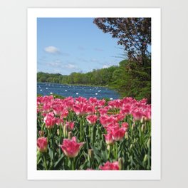 Flowers by the Lake!  Art Print