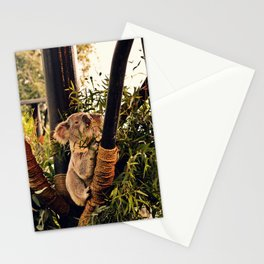 Hungry Koala Stationery Cards