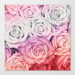 Some people grumble II  Floral rose flowers pink and multicolor Canvas Print