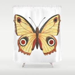 Juno Butterfly Illustration Shower Curtain
