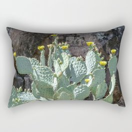 """Prickly Pear Canyon"" by Murray Bolesta Rectangular Pillow"