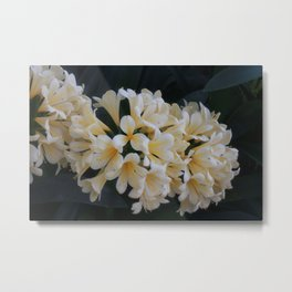 Fairy Flowers Metal Print
