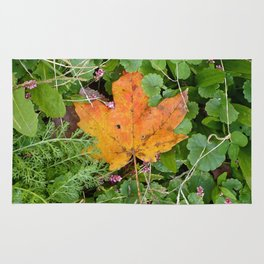 Autumn Leaf Rug