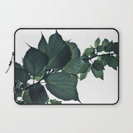 BLUE-GREEN Laptop Sleeve