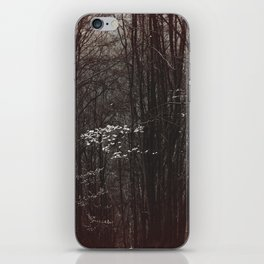 Up in the mountain iPhone Skin