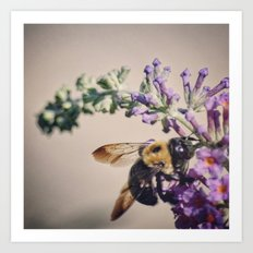 Bee-autiful Art Print