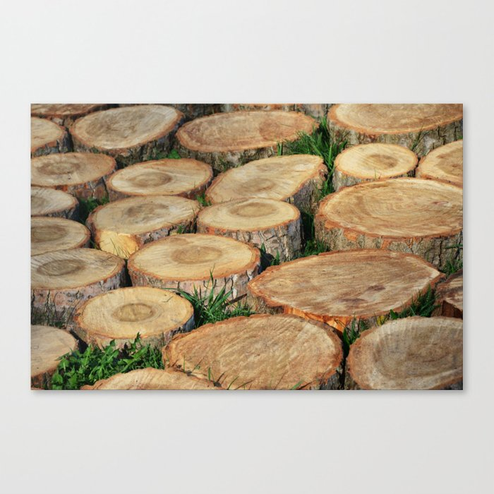 Stumps. Wood mosaic Canvas Print