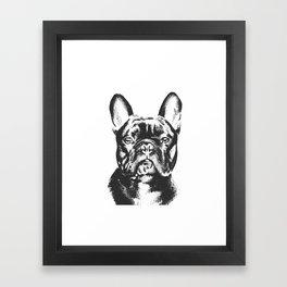 Black And White French Bulldog Sketch Framed Art Print