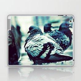 Pidgeons Of 6th Street Laptop & iPad Skin
