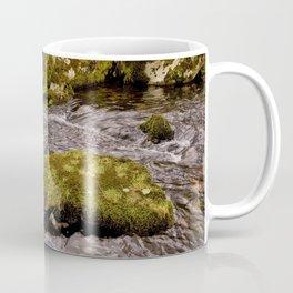 Meavy River, Dartmoor Coffee Mug
