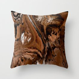 Pioneers Crossed The Harsh stoney and sandy of the desert of California Throw Pillow