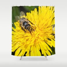 Bees tongue Shower Curtain