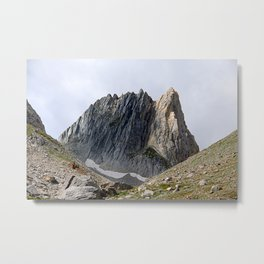 Alps Mountains Peak Rock Face Alpine Landscape Metal Print
