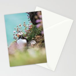 RR(288) Puffins Stationery Cards