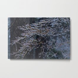 Tree of Light Metal Print