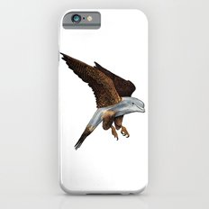 Peregrine Dolphin iPhone 6s Slim Case