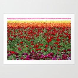 Field of My Dreams! Art Print