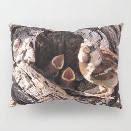 House Sparrow Keeping House Pillow Sham