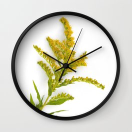 Goldenrod Flower Wall Clock