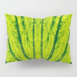 Biomimicry - Biomaterials - Symmetry Pillow Sham