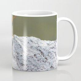 Perched Orange Dragonfly Coffee Mug
