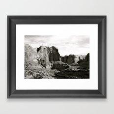 Amasa Back b/w Framed Art Print