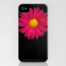Pink Chrysanthemum Slim Case iPhone (4, 4s)