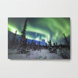 Photos Alaska USA Denali National Park Aurora Nature Sky Snow Trees polar light northern light Metal Print