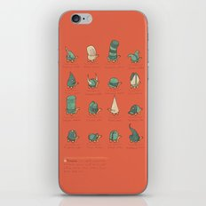 A Study of Turtles iPhone Skin
