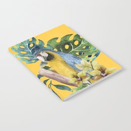 Macaw Parrot Notebook