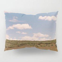 Resonate Pillow Sham