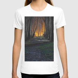 Haunted Forest and Andrew Goldsworthy Sculpture T-shirt