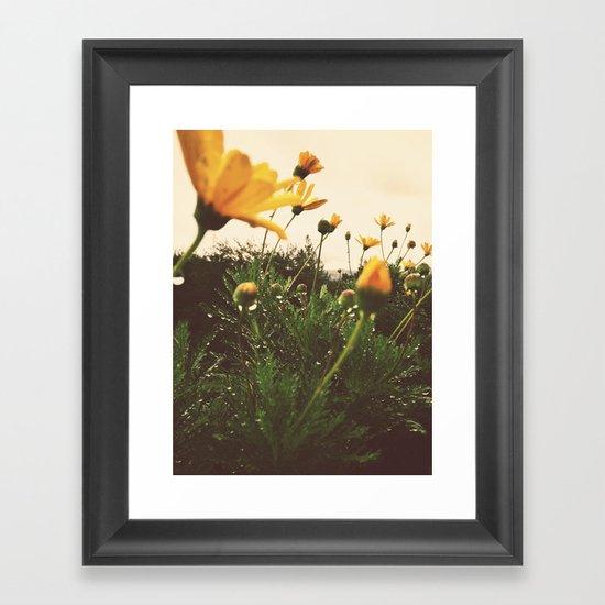 Post-Rain Yellows Framed Art Print