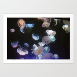 Glo jellyfish softbodied free-swimming aquatic animals Art Print